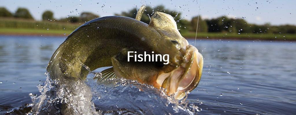 homepage-banner-fishing