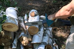 Fall Prep: The hard stuff: cutting  branches and logs.